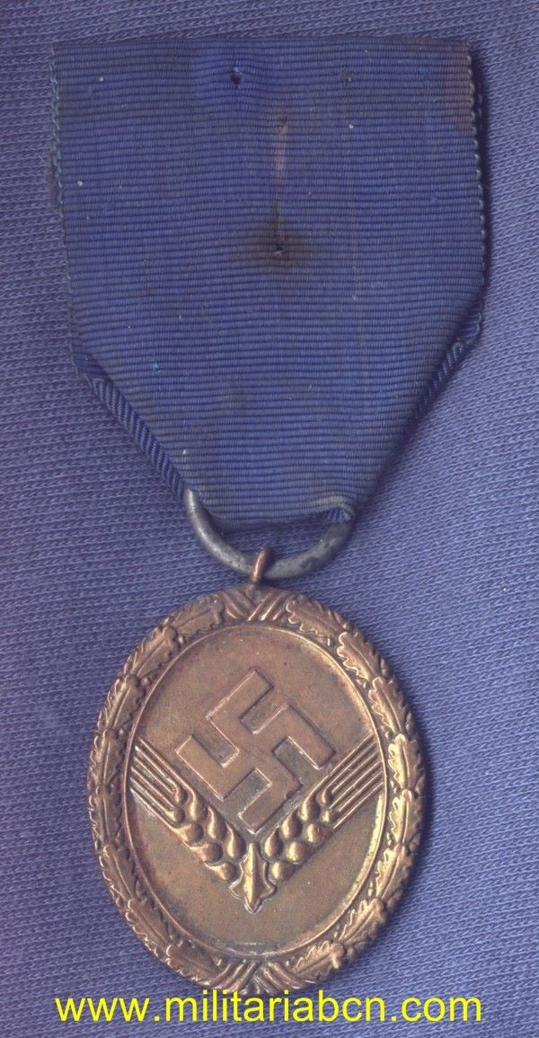 Germany III Reich. RAD Long Service Award for Women. 4rd Class, for Women. Dienstauszeichnung für den Reichsarbeitsdienst  für die weibliche Jugend.  III Reich medal.