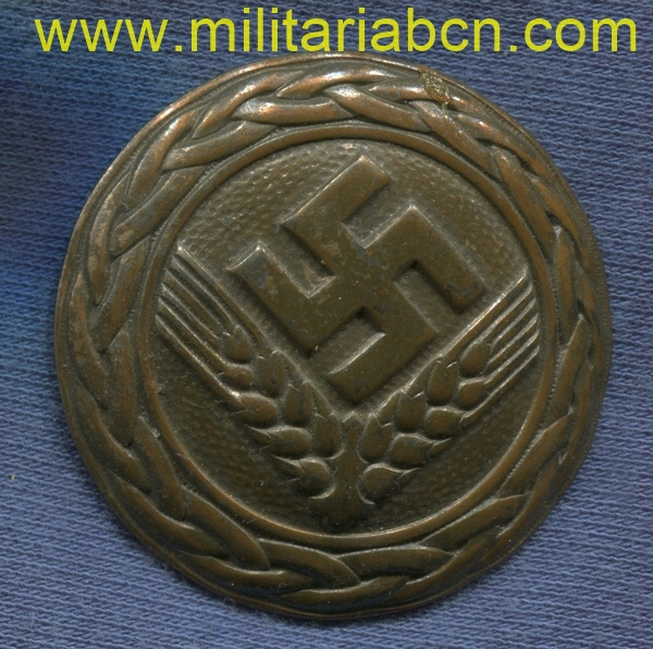 Germany III Reich. RAD Women's badge. Reichsarbeitsdienst. RADwJ. Marked Assmann & Söhne. Without pin. German award second world war.