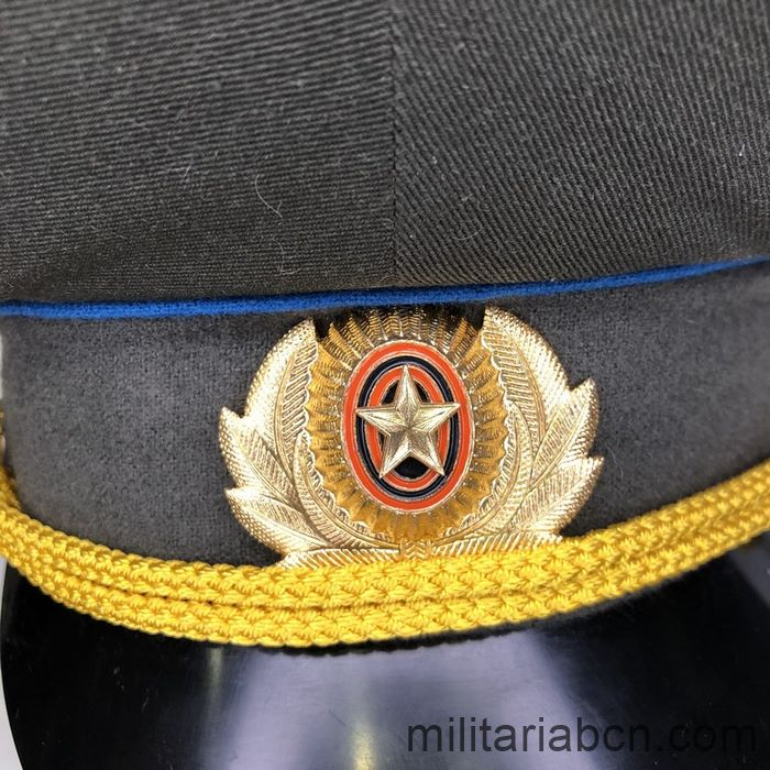 Russia. Russian Federation. Air Force visor cap.